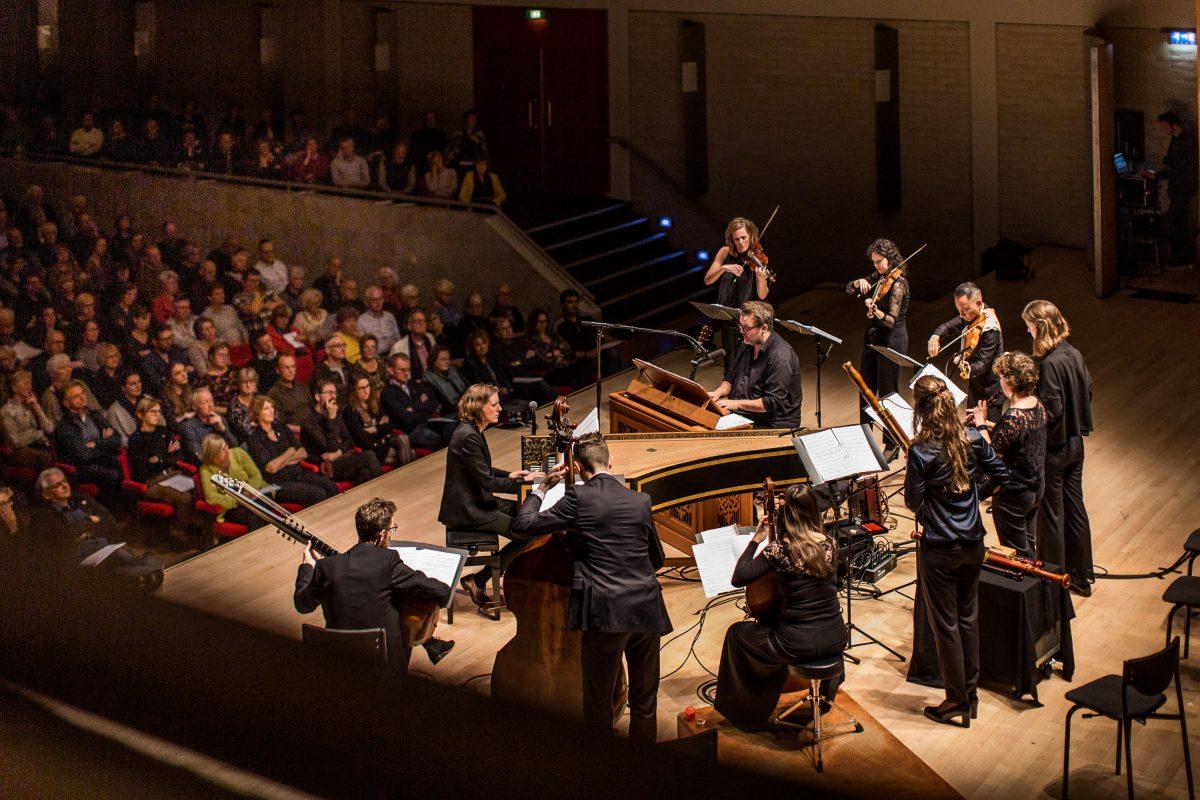 Holland Baroque lid van REMA